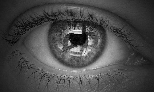 Blog: Oczy - ciekawostki